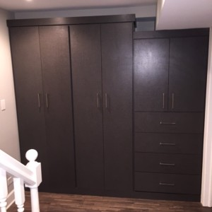 This Lincoln Park home owner needed basement storage. We custom built an entire wall of storage units. Finished in Onyx features adjustable shelves ... & Wall Unit Storage System in Lincoln Park - Closet Outfitters